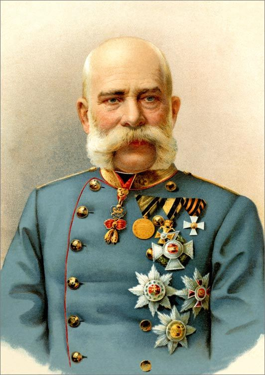 Franz Josef 1 was the leader of Austria- Hungry Triple Alliance/ Central Powers during World War 1