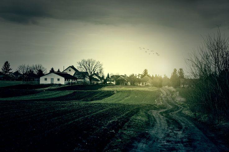 In het natte en soms koude Nederland worden de huizen voortdurend belast met water en vocht. Een goede buitenmuurverf kan u een hoop ellende besparen.
