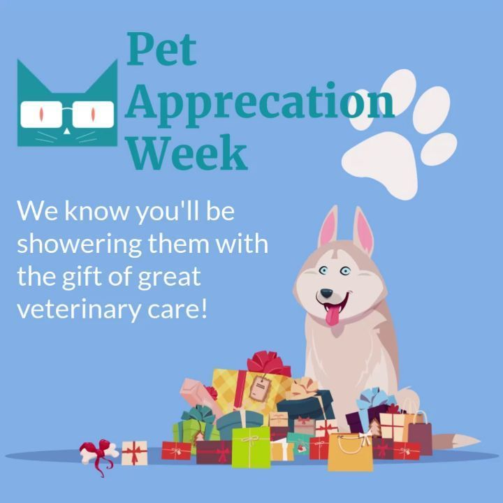 We Know That Pet Appreciation Is Just A Way Of Life For Amazing Veterinarians And Their Support Staff But Go Ahead