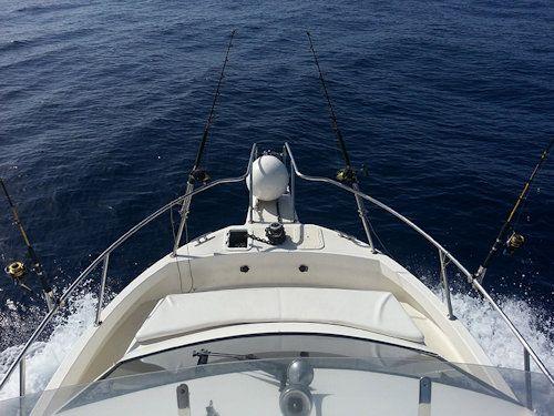 Tenerife fishing trips