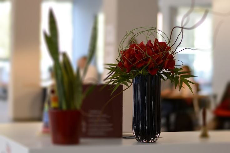 Red Amaryllis and bamboo leafs_real feel.