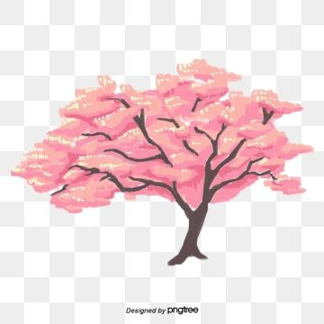 Japanese Cute Plant Elements Of Cherry Blossom Trees In Spring Cherry Blossom Pictures Cherry Blossom Tree Blossom Trees