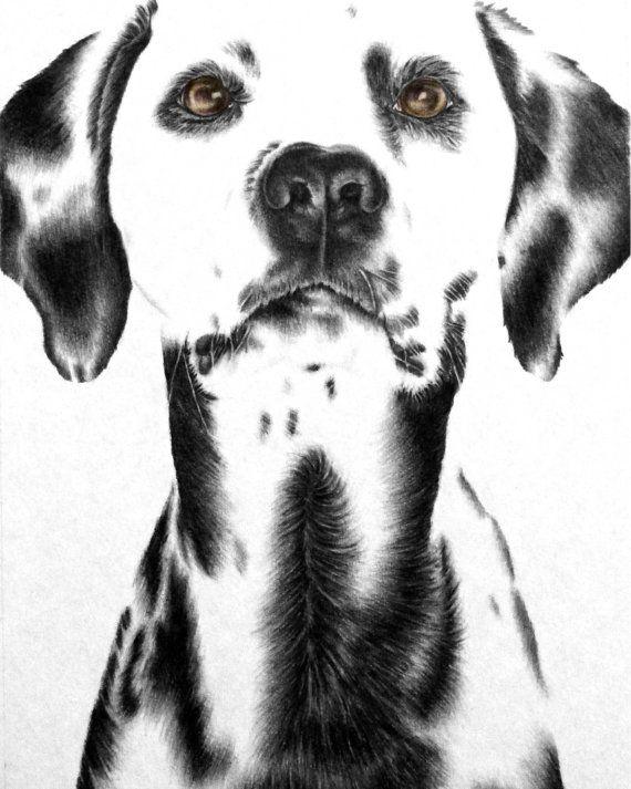 Dog print dog art dalmatian dog poster dog by artistrybylisamarie