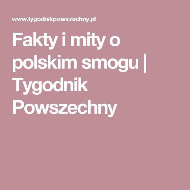 Fakty i mity o polskim smogu   Tygodnik Powszechny