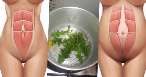 Protège ta santé: Avez-vous un ventre ballonné? Cette plante est le seul remède pour vous.