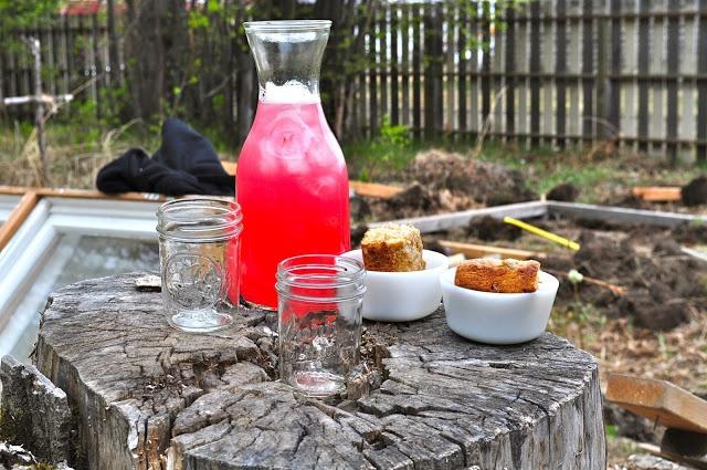 Rhubarb Juice-super summer drink!