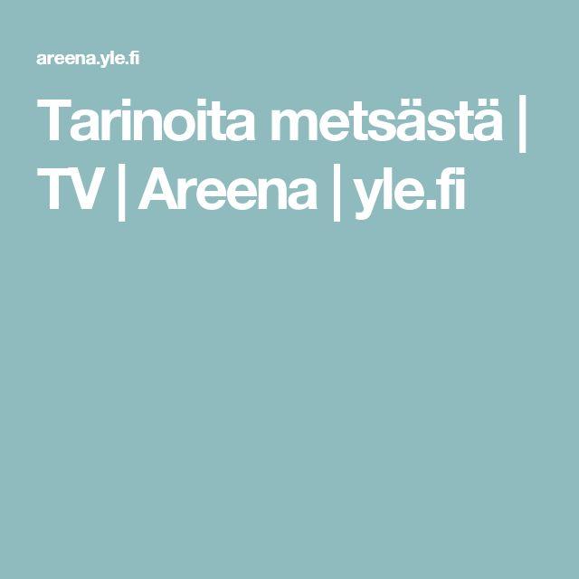 Tarinoita metsästä | TV | Areena | yle.fi