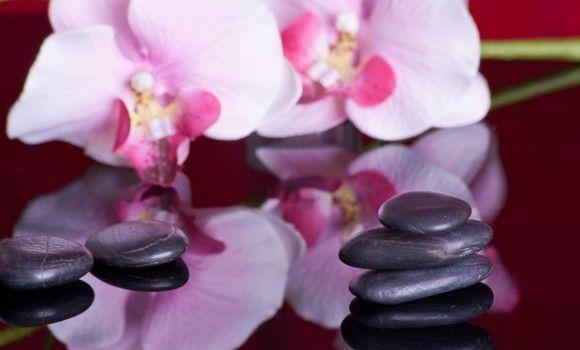 Introduction to Nuru Massage