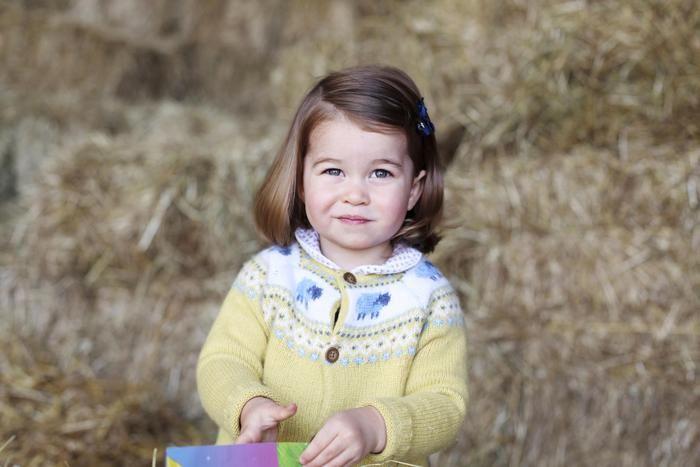 Il duca e la duchessa di Cambridge hanno pubblicato una nuova foto della principessa Charlotte in occasione del secondo compleanno della bambina che cadrà domani.  (ANSA)