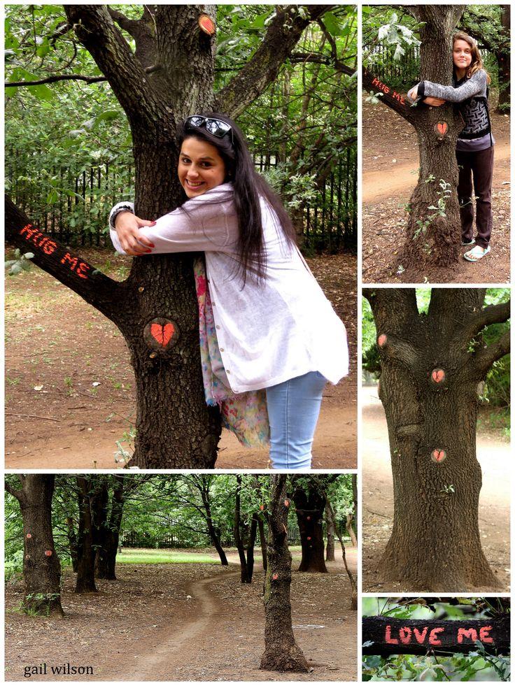 """""""For the Love of Trees"""" Gail Scott Wilson - JoziLandArt November 2014"""