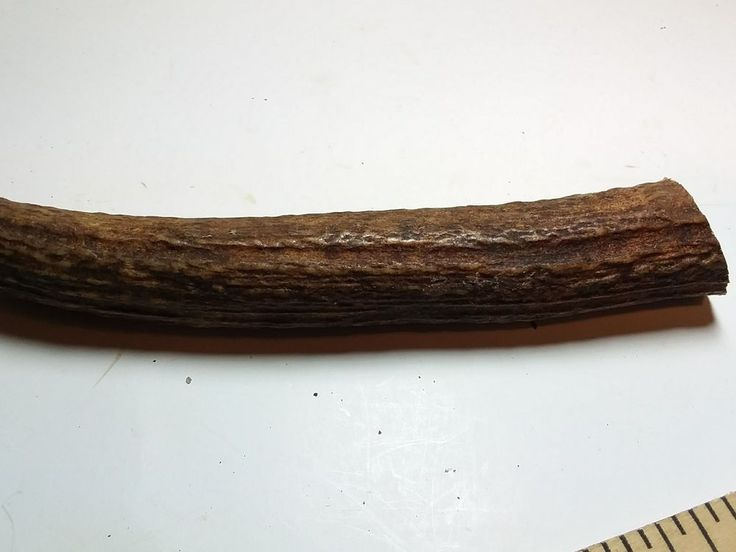 Elk Antlers Knife Handle  wood Pen Turning Craft Supplies 5 Inches top shelf k66