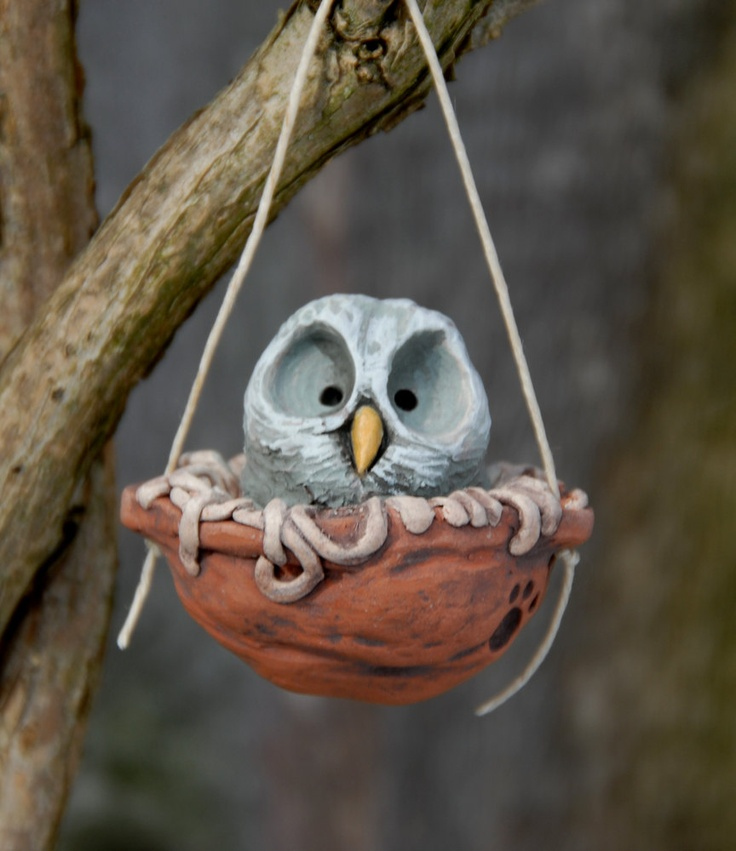 great grey owlet walnut nest by snoozes on Etsy