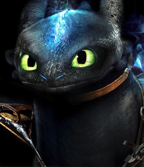Toothless Wallpaper: 17 Best Images About Animation Movie On Pinterest