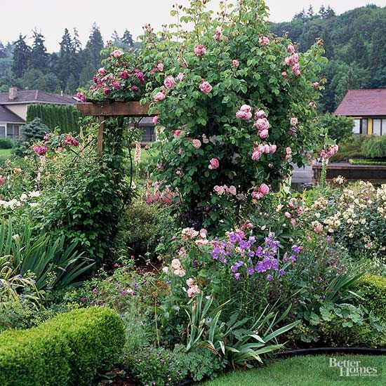 Few things go hand-in-hand in the garden like roses and arbors.