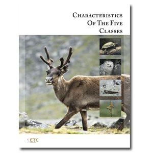 $40 BUY - Main Characteristics of Vertebrates - movement, respiration, circulation, structure, reproduction; Nomenclature with descriptions; ETC Montessori