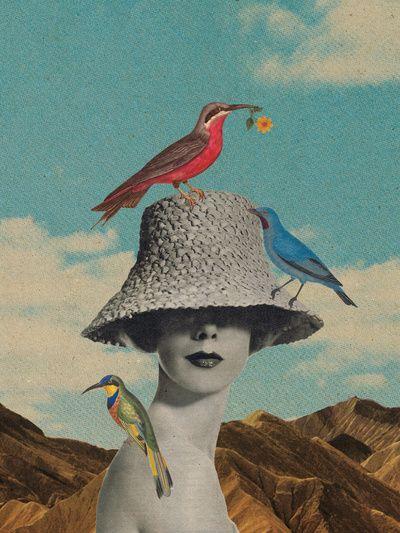 collage.Collage Artwork, Sammy Slabbinck, Pictures Collage, Art Prints, Graphics Design, Inspiration Pictures, Birdland, Colors Black, Art Illustration
