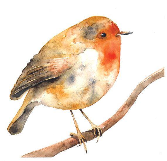 Rockin' Robin Watercolor Illustration Bird Print Orange Brown Feather Nature Branch. $25.00, via Etsy.