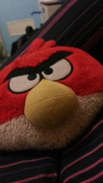 My angry bird pillo