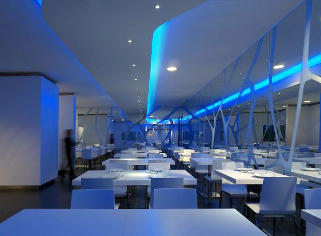 Glass Open Kitchen Restaurant | For those of you who want to come with your spouse, there are ...
