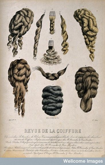 Wellcome Library, London   Ten illustrations of different types of wigs and hair pieces.   1 May 1875
