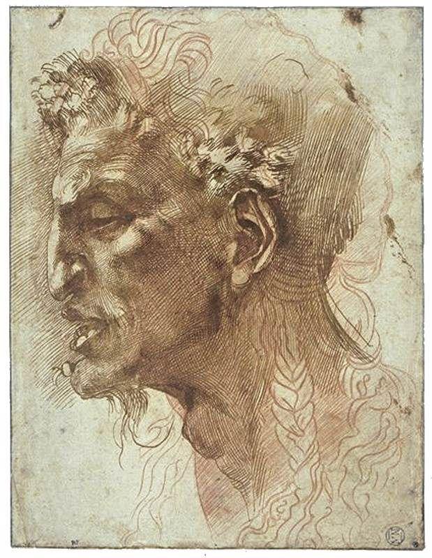 Michaelangelo - head of a fawn