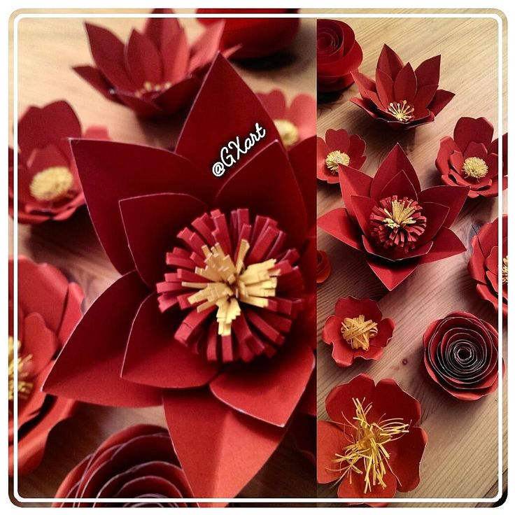 🌠Red Backdrop Flowers 🌹