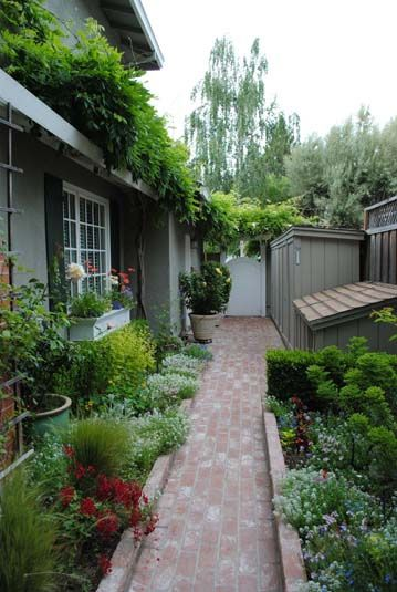 Side yard.  I love this!!! So clean and pretty