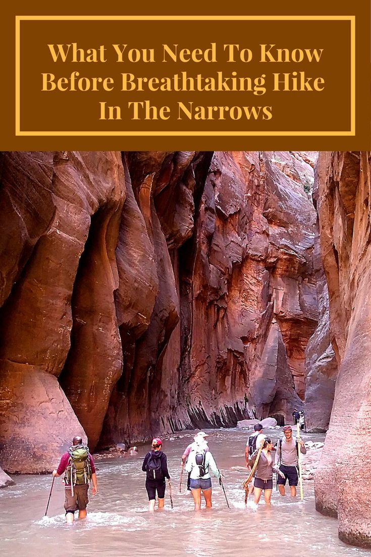 Would you like to hike The Narrows in Zion National Park, Utah? Check what you need to know before hiking the Narrows!