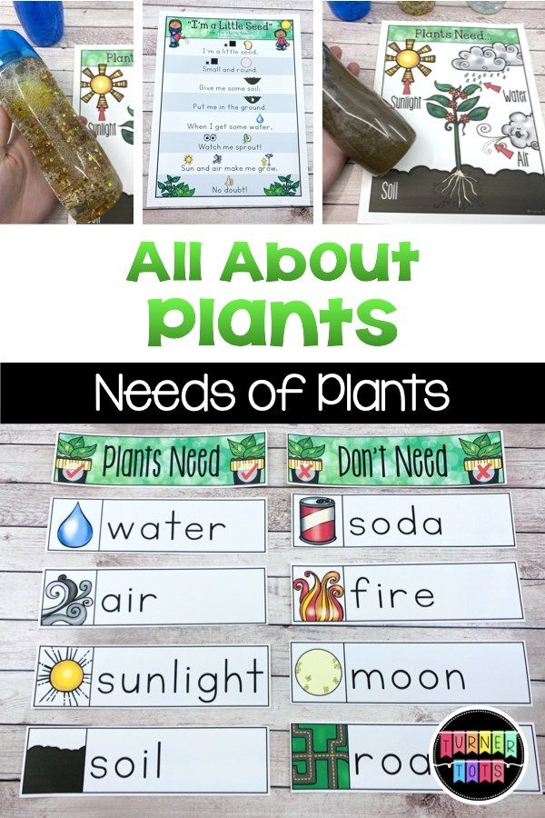 Garden Science Activities To Plant A Love Of Learning Turner Tots In 2020 Plant Activities Science Activities Seed Activities For Kids Preschool literacy activities for plants