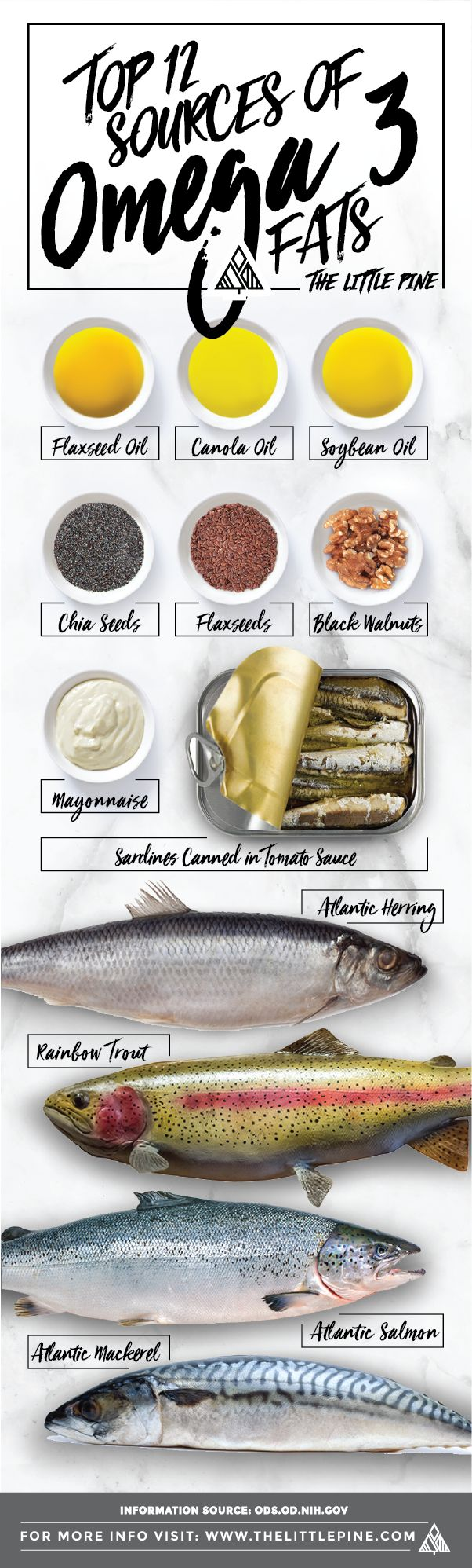Best 25 omega 3 foods ideas on pinterest omega 3 for Healthiest fish list