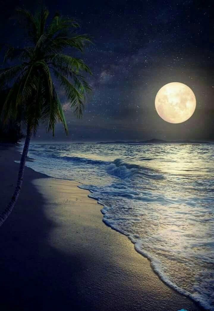 Moonlight And Water Beautiful Moon Night Skies