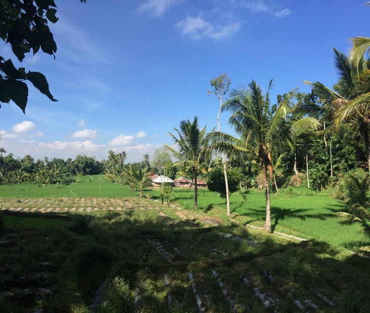 Tetebatu in Sikur, Lombok Timur, NTB