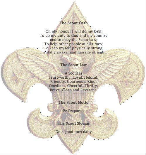 Boy Scout Essay With Quotes: 62 Best Eagle Scout Quotes Images On Pinterest