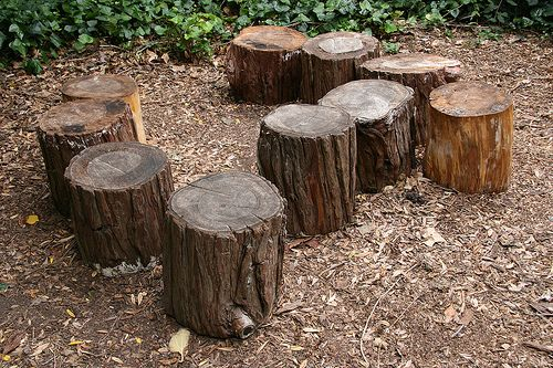 We would like to incorporate some natural benches for the for Tree trunk garden bench