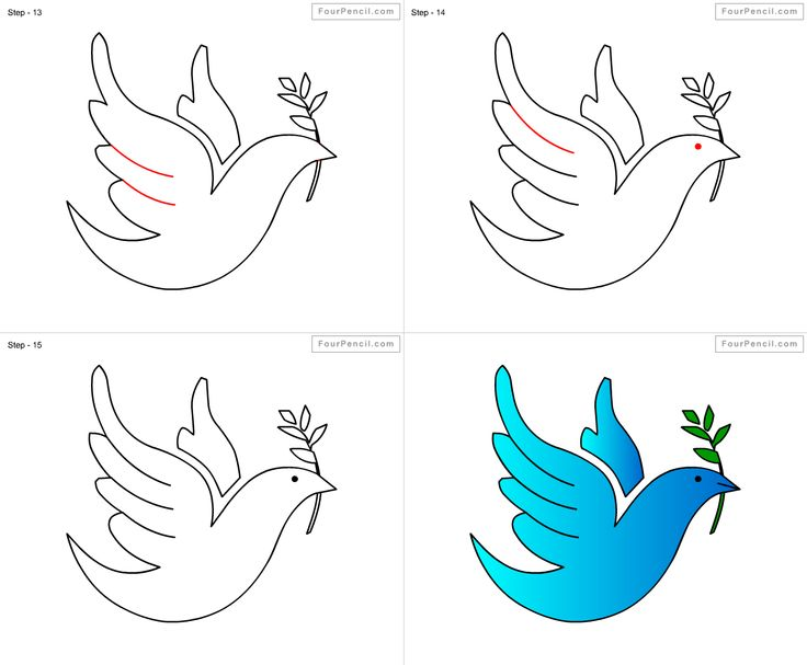 How to draw Dove for kids step by step drawing tutorial ...