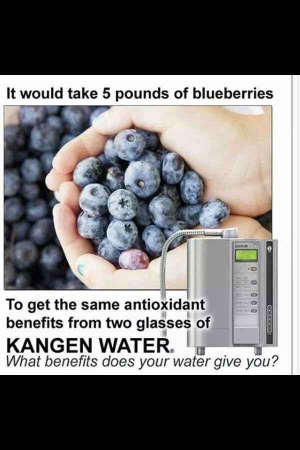 Kangen water  and blueberry comparison www.kangendemo.com www.healthybydannorris.com www.dannorrisblog.com/category/health/