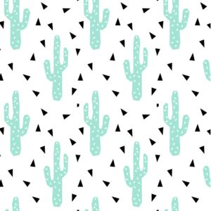 cactus mint tri triangle trendy design for minimal kids baby desert southwest by charlotte winter on spoonflower