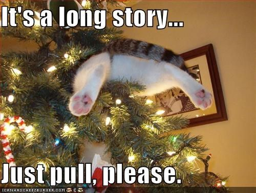 It's a long story... Just pull, please. - Cheezburger