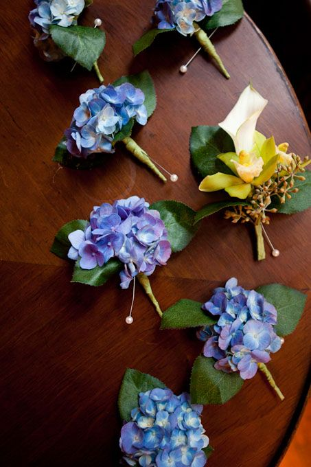 HYDRANGEA GROOMSMEN BOUTONNIERES Scott wore a white calla lily flanked by green orchids and eucalyptus seeds. It was pinned to his classic bow-tie tuxedo. Each groomsmen's boutonniere was made from a single purple hydrangea.