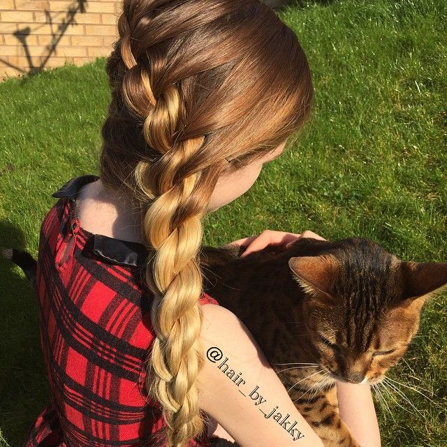 """""""Just another view of the #3dsplittwistbraid french braid. Liv wasn't happy that I posted the pic without our cat!  - #hair #hairup #updo #hairstyles # #cgh #cutegirlshairstyles #hairdresser #hairdressing #hairofinstagram #instahair #fabulous #pretty #curls #followme #weddinghair #prom #promhair #party #partyhair  #bridalhair #hairdesign #mobilehair #telford #braids #plaits"""" Photo taken by @hair_by_jakky on Instagram, pinned via the InstaPin iOS App! http://www.instapinapp.com (04/08/2015)"""