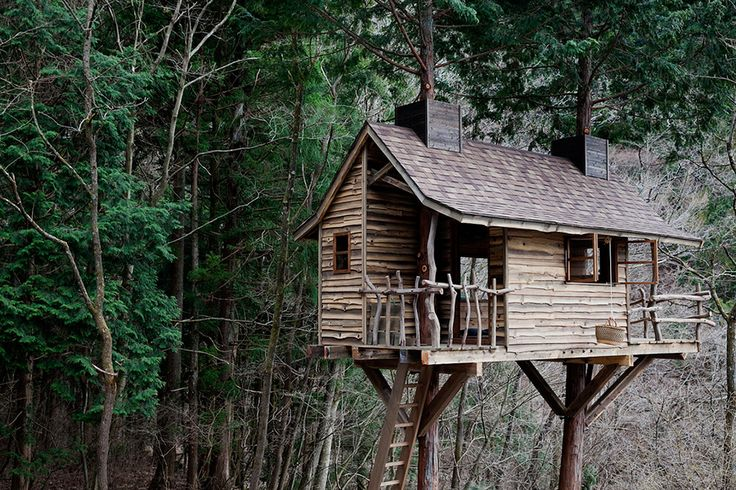 Asumi Treehouse. Firm and beautiful treehouse built by tiny house builders based in Tokyo - Tree Heads & Co. The supporting trees are Japanese cypresses. Located in Fujiyoshida, Yamanashi, Japan.http://treehouselove.com/post/113068219409/asumi-treehouse