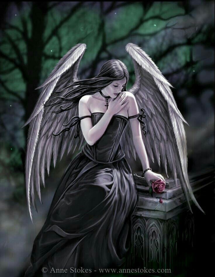 59 best my phone images on pinterest animales kitty cats and phone - Gothic fallen angel pictures ...
