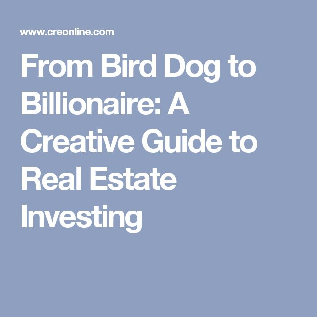 From Bird Dog to Billionaire: A Creative Guide to Real Estate Investing