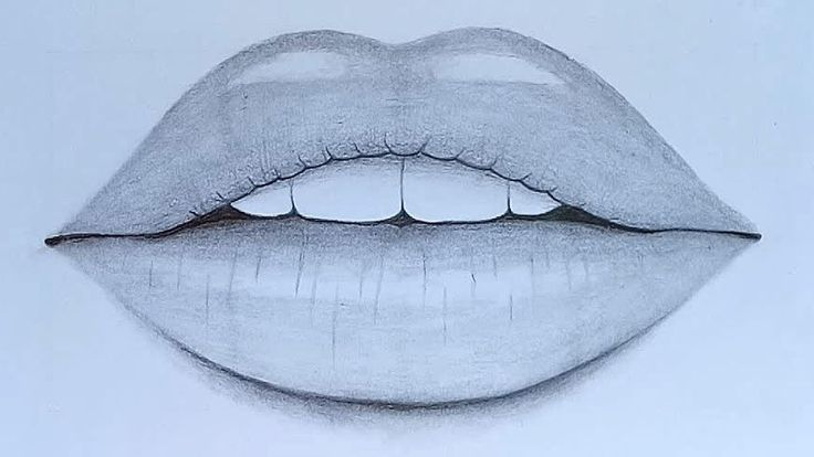 How to draw Lips with pencil sketch step by step - YouTube ...