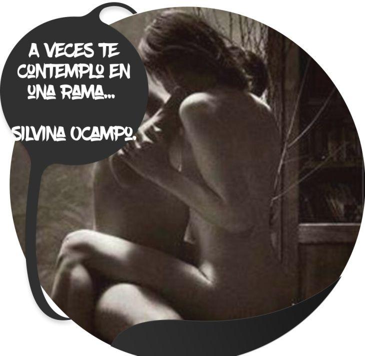 A veces te contemplo en una rama… Silvina Ocampo. (Andrés Cifuentes)