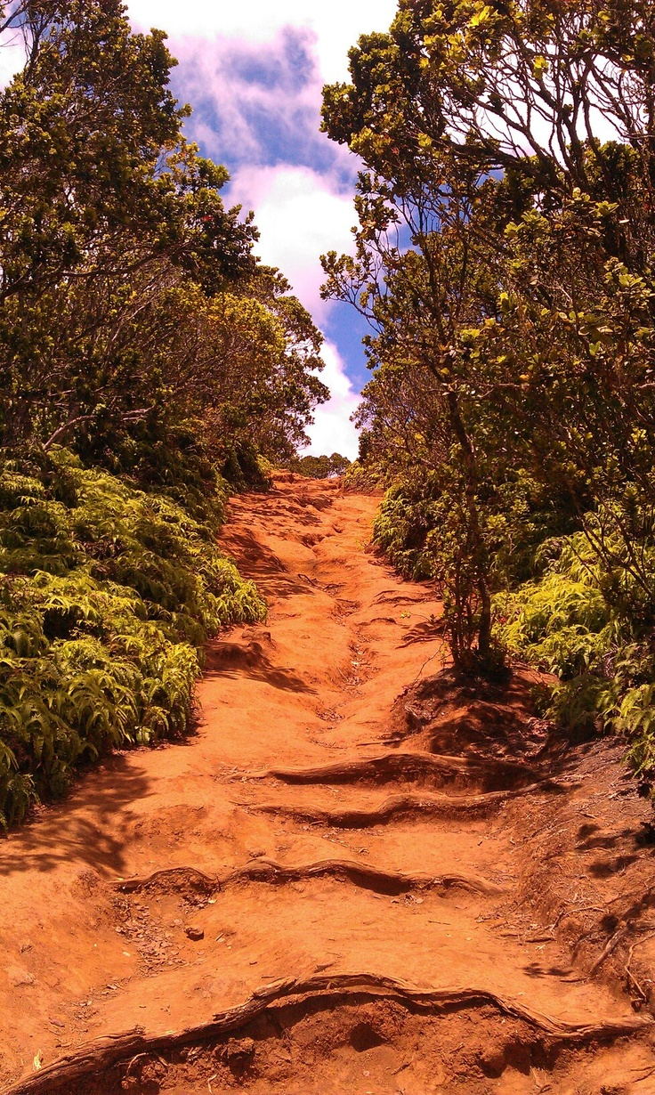44 best Hawaii images on Pinterest | Big island hawaii, Diving and ...