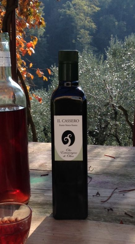 olio extravergine di oliva il cassero