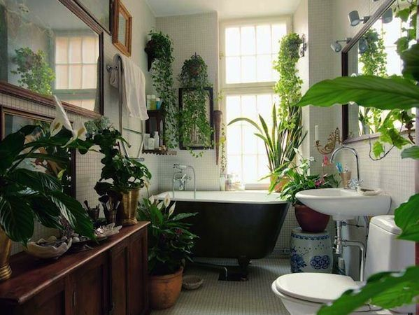 Garden Bathtub Decorating Ideas home bathroom decorating ideas photo 6 Stylish Houseplant Display Idea 5
