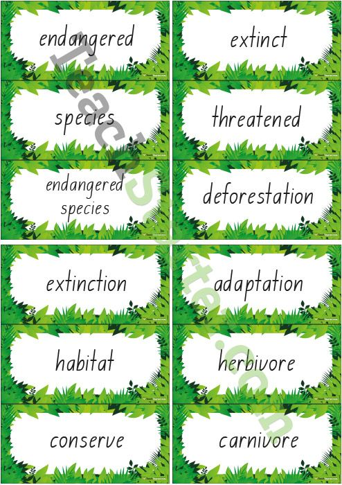 adaptation essay on pandas Every organism has a unique ecosystem within which it lives this ecosystem is  its natural habitat this is where the basic needs of the organism to survive are.