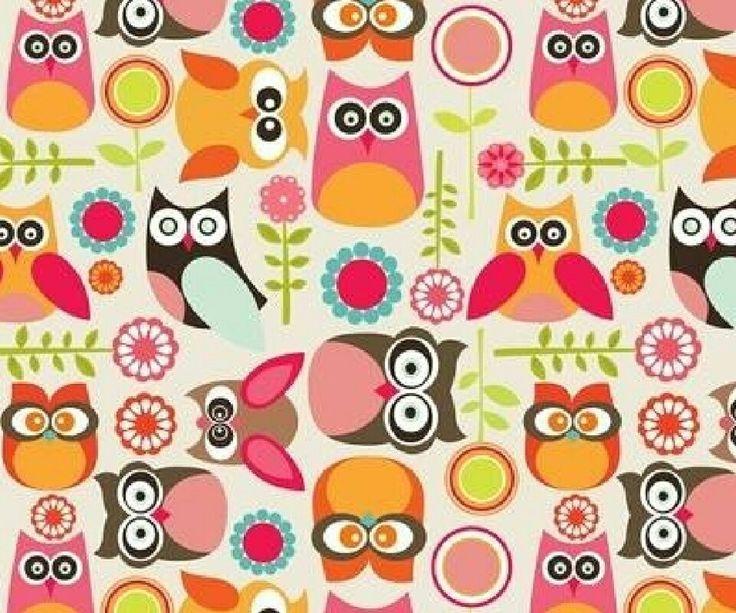 #cute  #owl